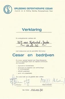 Certificaat_0011_certificaat-Oefentherapie